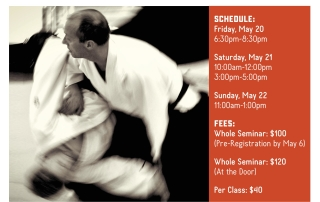 Lars Stjernstedt Sensei at NOLA Aikido May 2016 Flyer-page-001